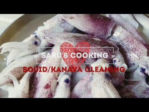 How to clean Squid/Kanava