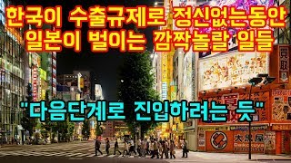 """한국이 수출규제로 정신없는동안 일본이 벌이는 깜짝놀랄 일들 """"그 다음단계 진입 가시화"""""""