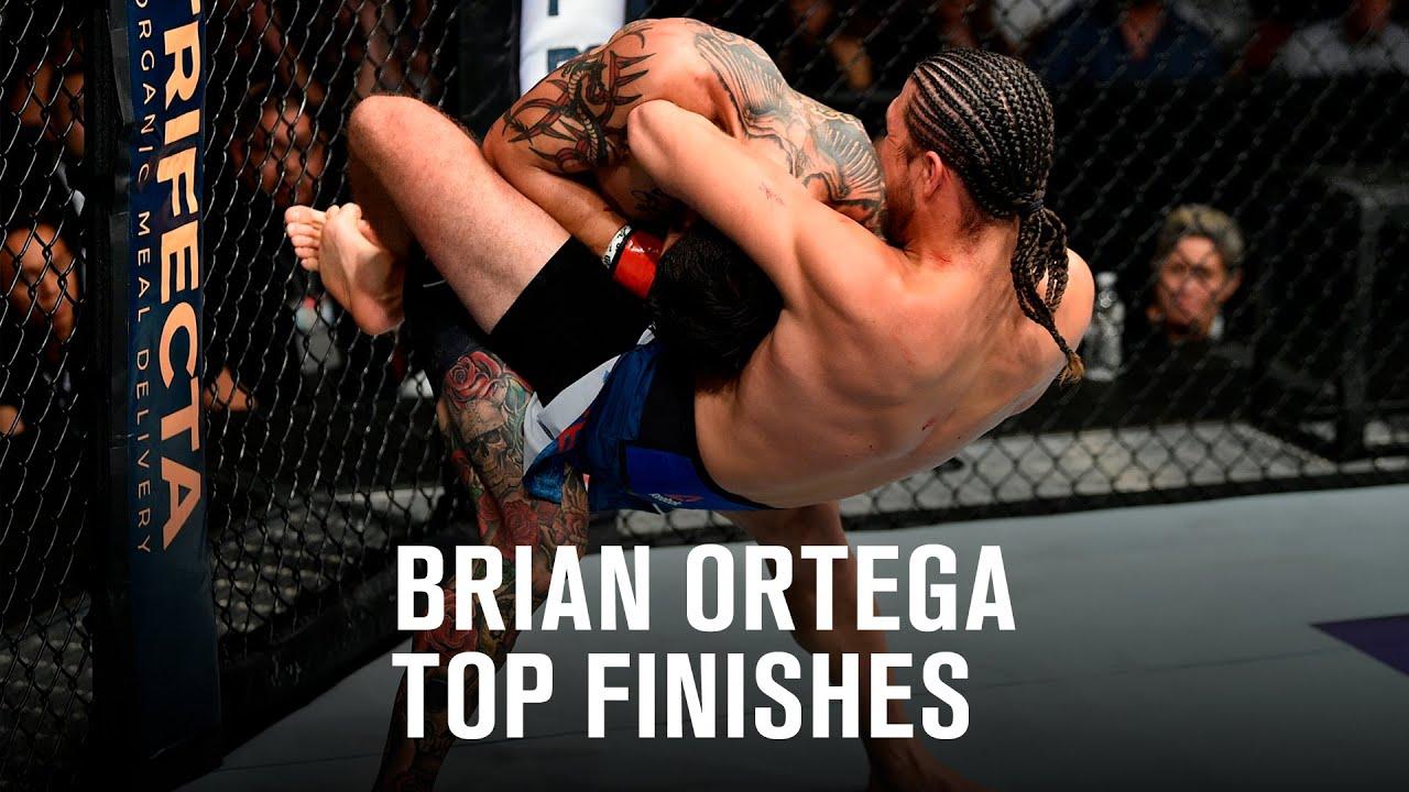 Download Top Finishes: Brian Ortega