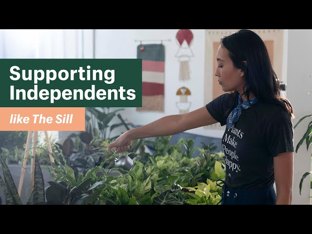 Supporting Independents like The Sill