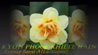 KYUN PHOOL KHILTE HAIN - Kumar Sanu Alka Yagnik - Aao Pyar Karen