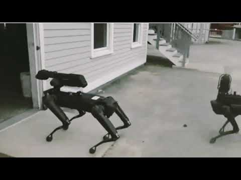 Mass. State Police Tested Out Boston Dynamics' Spot The Robot Dog. Civil Liberties Advocates Want To