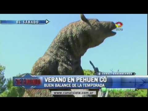PEHUEN CO