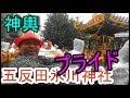 29年 五反田 氷川神社 例大祭 本社神輿立派な渡御「台風18番(タリム)影響」。