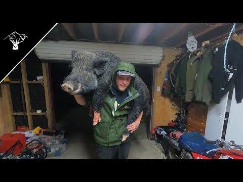 Pig Hunting NZ | Big Boar | Good Jaw