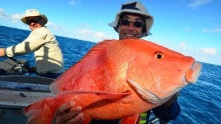 More Big Fish Kaos!!  Deep sea fishing Video!!  Great Barrier Reef!!  Part 2!!(http://www.reefari.com More deep sea fishing videos on the Great Barrier reef. This is part 2, with more Big fish and even a 6 way hookup fishing the Deep reefs ..., 2013-09-20T20:20:23.000Z)