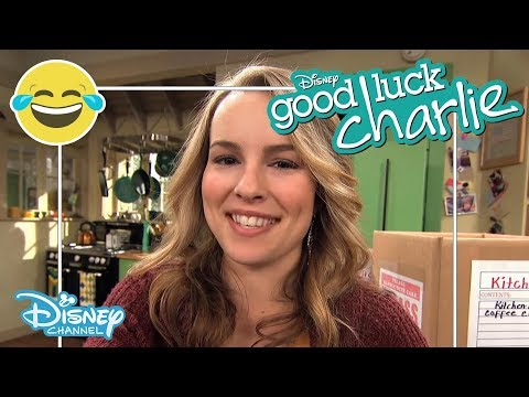 Good Luck Charlie - Teddy