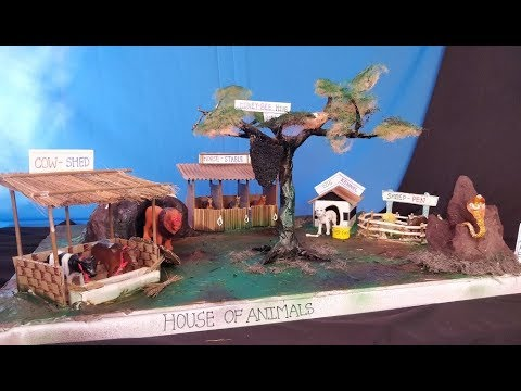 DIY School Project House of Animals | Animal shelter | Animals and their homes