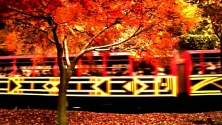 Song for Autumn - The Electronic Works of Rocky Maldonado