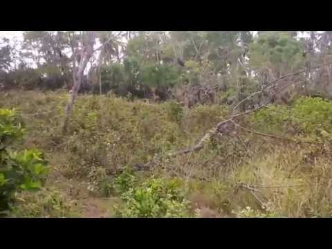 Bali Cliff Front Land For Sale with Beach Access