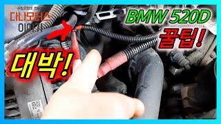 수입차정비 BMW520D 디젤차량 꼭 보셔야 할 영상 …