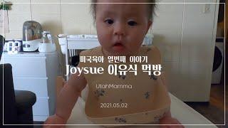 미국육아 Ep.10 | Joysue 이유식 먹방