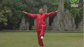 Yi Qi Gong - DEMONSTRAÇÃO - Sequência Completa - Continuação do Lian Gong em 18 Terapias