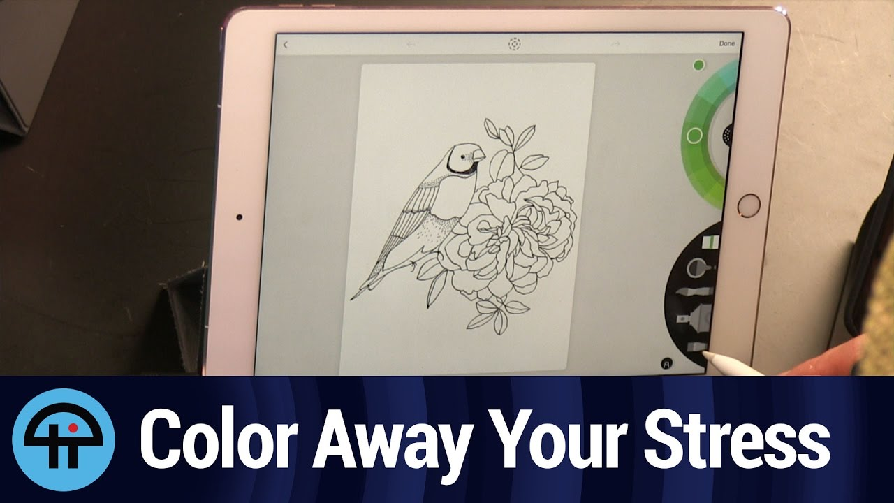 Lake Is An IPad Coloring Book By Artists