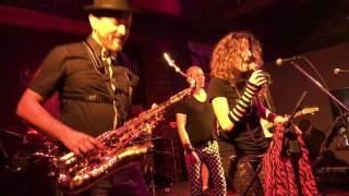 רחבת הריקודים - להקת הפיתות עם נועה לוי