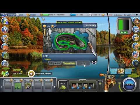 Catfish / Lele - Go Fishing Facebook (Akurat 99%)