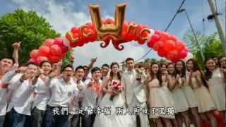 Lee Chong Wei Wedding Video
