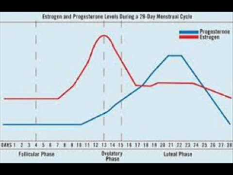 Clomid And Progesterone Levels