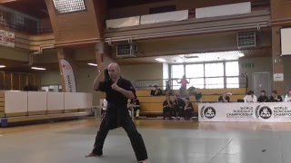 Nunchaku freestyle world championship 2016 Pierre Mercier 2nd place