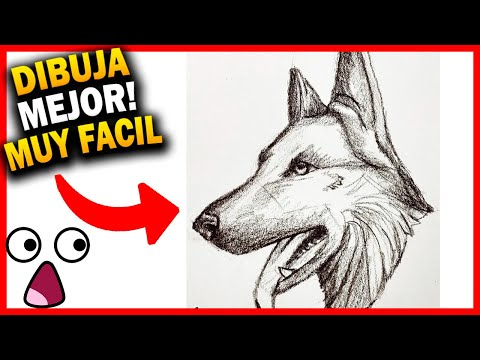 😱-como-dibujar-un-perro-pastor-alemÁn-paso-a-paso-a-lápiz-fácil.-🔥-dibujos-de-animales-realistas