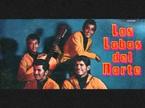 Quisiera Amarte Menos Los Lobos Del Norte y Memo Lugo