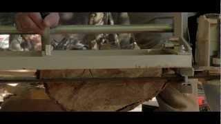 Dulcimer Series, Part 1: Making Dulcimer Wood
