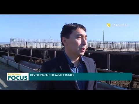 Kazakhstan is planning to boost meat exports to 2.4 billion dollars by 2027