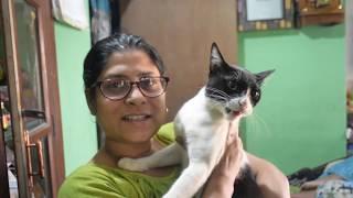 Chele biye biye korche | Bengali Family Life Style vlog - Day with Ousumi