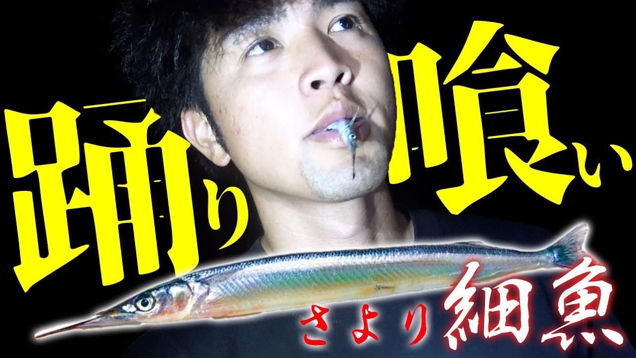 生きたまま細魚(さより)食べてみた【西表遠征#1】