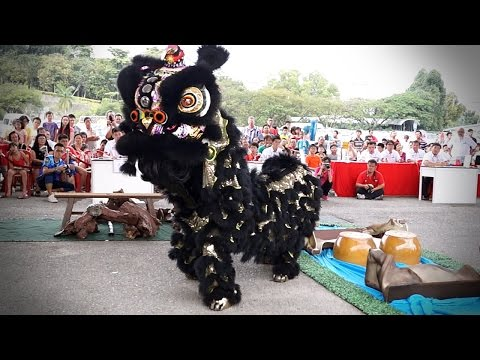 2015 Traditional Lion Dance Competition - 武吉柏倫東永駿醒獅體育會