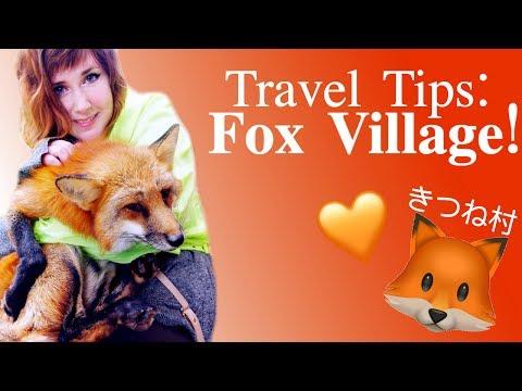 Travel Tips: Zao Fox Village, Japan!