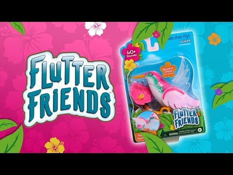 Care for your very own hummingbird with Flutter Friends from Just Play! | A Toy Insider Play by Play