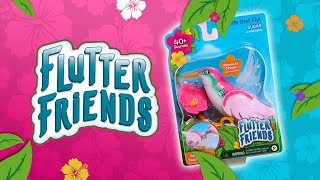 Care for your very own hummingbird with Flutter Friends from Just Play!   A Toy Insider Play by Play