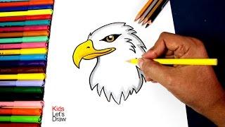 Cómo dibujar un Águila (paso a paso) | How to draw an Eagle