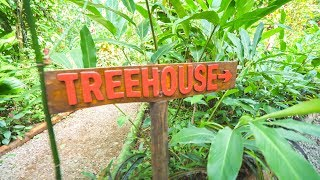 ARRIVING IN THE JUNGLE - Tree House Day 1