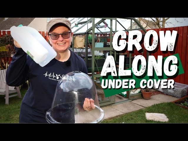 Spring Sowing Under Cover | cloches, milk jugs, propagators and the greenhouse