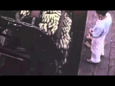 Journey to Banana Land (1950) - Part 2