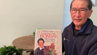 How To Make Bonsai On The Cheap