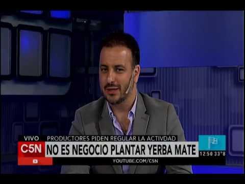 C5N - Agro: No es negocio plantar yerba mate
