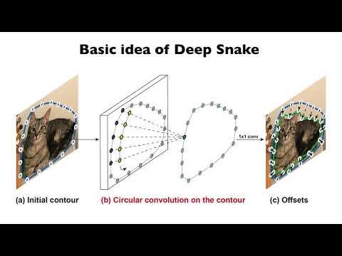 Deep Snake for
