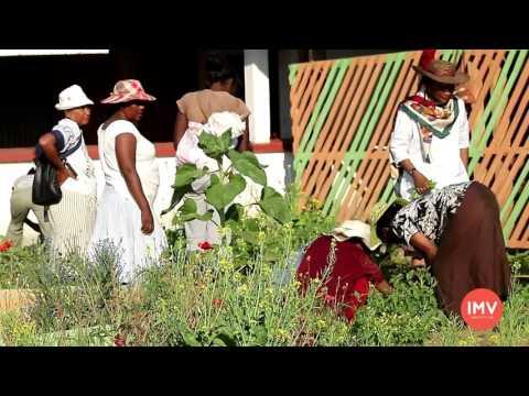 Agriculture Urbaine à Antananarivo, un mécanisme d'adaptation au changement climatique thumbnail