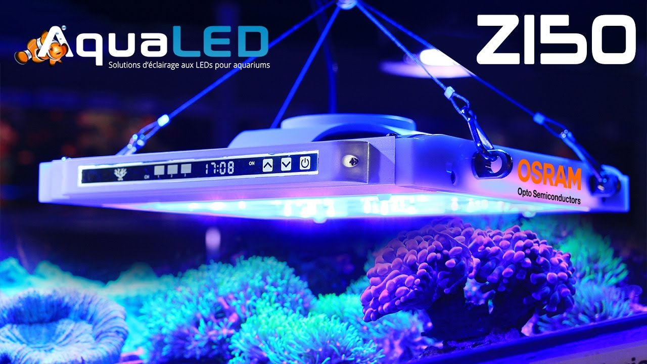 Premire vido de la lampe led z150 aqualed au dessus dun premire vido de la lampe led z150 aqualed au dessus dun aquarium parisarafo Images