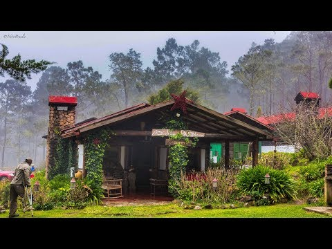 Villa Pajón, Eco-Lodge in Valle Nuevo, Constanza, R.D.