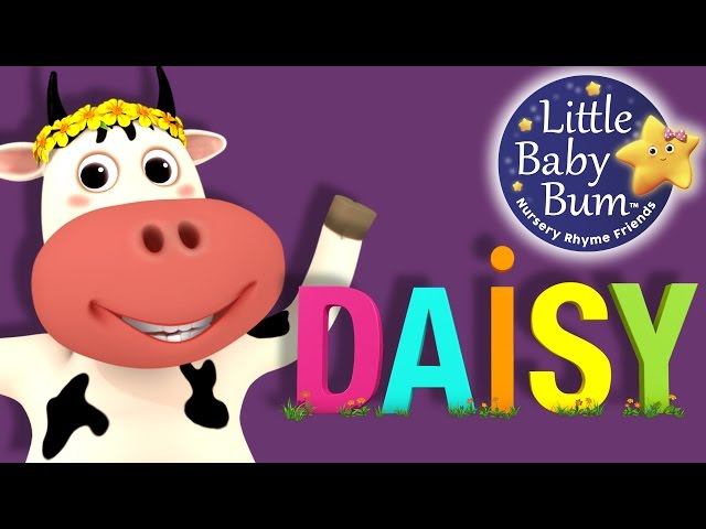 Little Baby Bum | DAISY | Nursery Rhymes for Babies | Songs for Kids