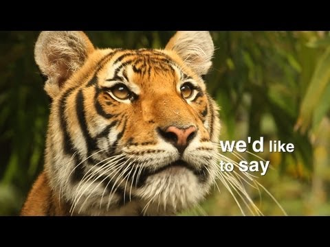 """The Wildlife Conservation Society Says """"Thank You!"""""""