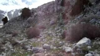 hasan yılmaz.dogal viyagra(ölene kadar ölmeyen sex)