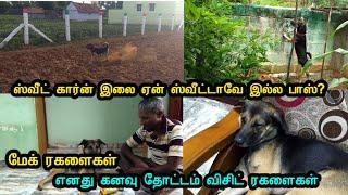 மேக் ரகளைகள்   எனது கனவு தோட்டம் விசிட்  ரகளைகள்   Dogs funny Videos in Tamil