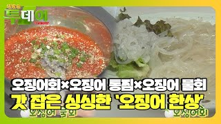 울진의 별미! 싱싱한 '오징어 한 상'ㅣ생방송 투데이(…