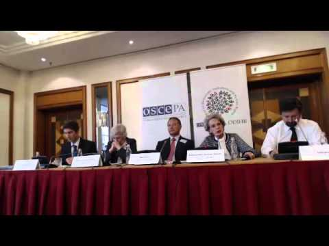 2014 Hungary (parliamentary) - post-election press conferenc