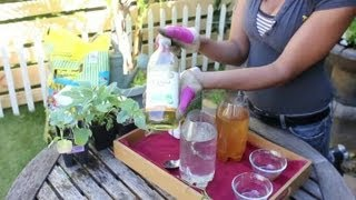 Natural Insecticides for a Vegetable Garden : Vegetable Gardening